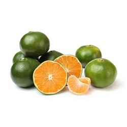 نارنگی سبز ممتاز - 1 کیلوگرم