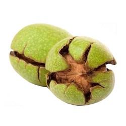 گردو سبز درجه یک - 1 کیلوگرم