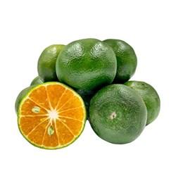 نارنگی سبز درجه یک - 1 کیلوگرم