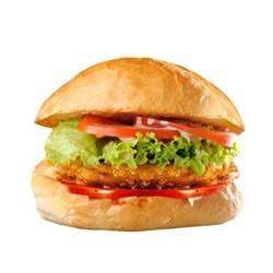 همبرگر خانگی 90% چیکن برگر سبزیجات 360 گرمی