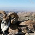 منطقه شکارممنوع جیک و زیدر بیرجند استان خراسان جنوبی
