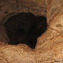 غار دوکچی استان آذربایجان غربی