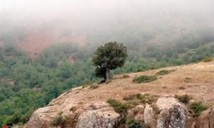 منطقه حفاظت شده پرور استان سمنان