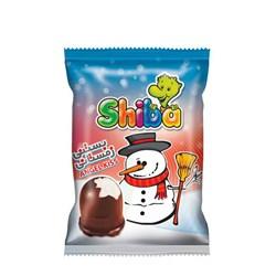بستنی زمستانی شیبا 17 گرمی