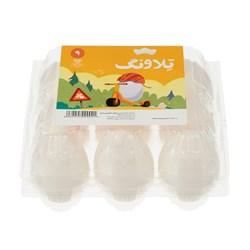 تخم مرغ غنی شده امگا 3 تلاونگ 9 عددی