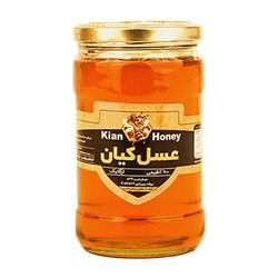 عسل چهل گیاه کیان کوه 1000 گرمی