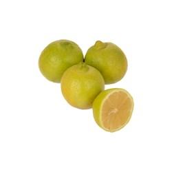 لیمو ترش سبز درجه یک - 1000 گرمی