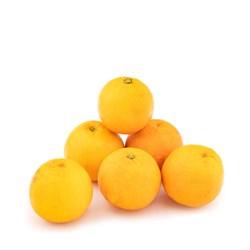 پرتقال ناول ممتاز - 1 کیلوگرمی