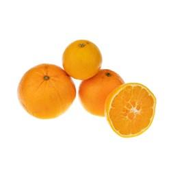پرتقال تامسون ممتاز - 1 کیلوگرمی